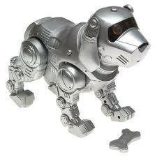Puppy Cam 3